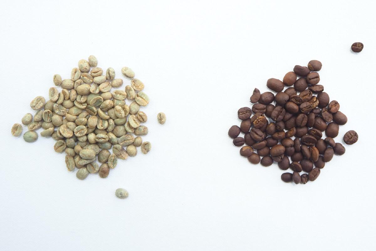 zielona kawa a czarna